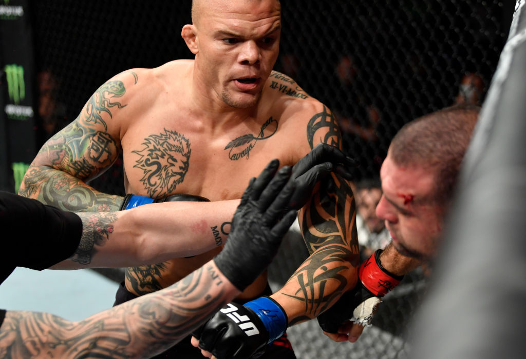 UFC 7.22 ハンブルク:アンソニー・スミス、マウリシオ・ショーグン ...